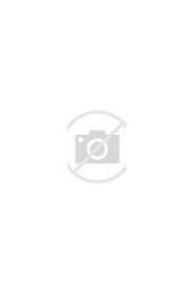 Image result for Maria Orsic Still Alive