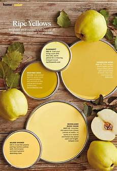 ripe yellows paint palette paint color used sunswept 083 4 by mythicpaint com mustard seed