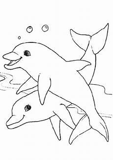 ausmalbilder delfine 15 ausmalbilder tiere