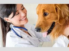 affordable veterinarians near me