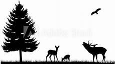 wald wiese feld silhouette landschaft tiere kaufen sie