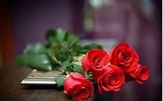 All New Wallpaper Gambar Bunga Mawar Merah Cantik 11