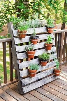 paletten im garten topfpflanzen und die notwendige fr 252 hlingspflege pallets garden patio garten garten ideen