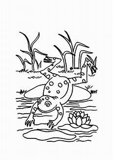 Frosch Ausmalbild Kostenlos Malvorlagen Fur Kinder Ausmalbilder Frosch Kostenlos