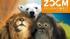 Zoom Erlebniswelt In Gelsenkirchen Infos Parkerlebnis De