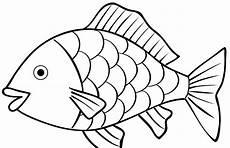 Mewarnai Gambar Ikan Kreasi Warna