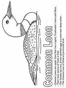 canadian animals coloring pages 16927 canadian provinces activities pirogravure cabane a sucre et oiseaux