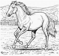 ausmalbilder gratis pferde 31 ausmalbilder gratis