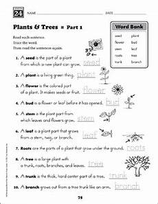 types of plants worksheets for grade 1 13701 plants and trees content words grade 1 vocabulary printable skills sheets