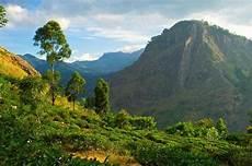 Impfungen Sri Lanka - medizinische hinweise impfungen f 252 r euren urlaub in sri