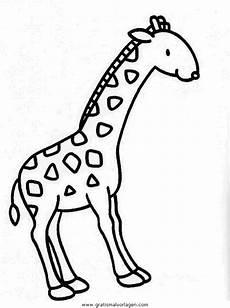 giraffen 30 gratis malvorlage in giraffen tiere ausmalen