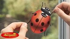 aeroxon fliegenk 246 der insekten k 228 fer sicher wirksam gegen