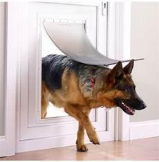 Shop For Staywell 174 Aluminium Pet Door Petsafe 174 Australia