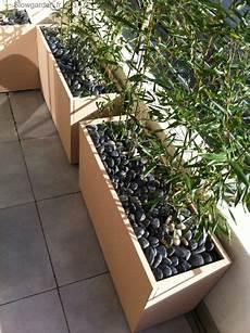 bac pour arbuste de jardin bacs plantes pour terrasse
