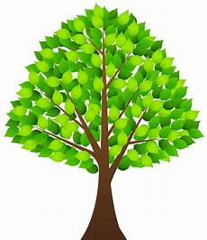 Clipart Transparent Background Tree Images