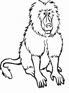 animals of the rainforest coloring pages 17165 rainforest mammals coloring pages biological science picture directory pulpbits net