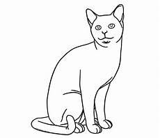 Katzen Ausmalbilder Warrior Cats Luxus Warrior Cats Ausmalbilder Kostenlos Top Kostenlos