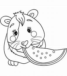 top 25 free printable guinea pig coloring pages