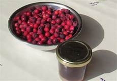 apfel felsenbirnen marmelade rezept ichkoche at
