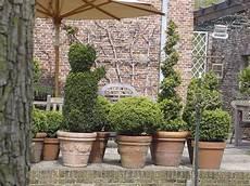 Winterharte Balkonpflanzen 23 Lebendige Vorschl 228 Ge F 252 R