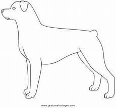 Malvorlagen Hunde Rottweiler Rottweiler Gratis Malvorlage In Hunde Tiere Ausmalen