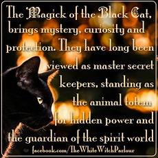 spiritual meaning of black eyes pin by the white witch parlour on the magick of love light magick animal spirit guides wicca