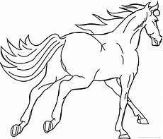 Malvorlage Pferd Ausmalbilder Pferde