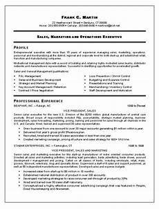 vp sales marketing resume template exle