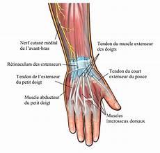 traumatisme au doigt contusion inflammation ou l 233 sion