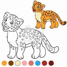 malvorlagen jaguar tiere kinder zeichnen und ausmalen