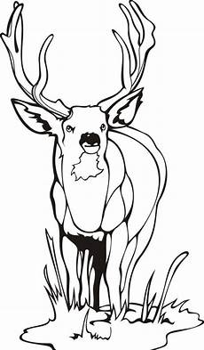 coloring sheets free 17584 printable deer coloring pages