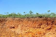 le de sol 15031 la terre et l humus