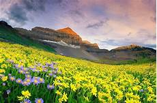 flower valley hd wallpaper 25 breathtakingly beautiful places you must visit before