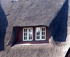 Schimmel Am Holzfenster Fachm 228 Nnische Arbeit Beugt Vor