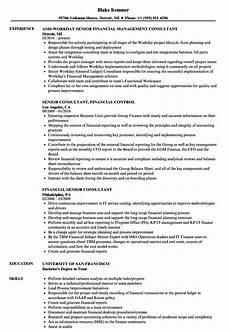 financial senior consultant resume sles velvet