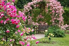 d ornement pour jardin breuillet nature au jardin d ornement