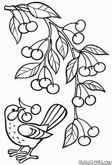 Malvorlagen Obst Quiz Malvorlagen Obst