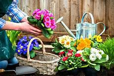 fiori e fiori e piante di settembre i lavori da fare in questo