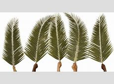 palm sunday 2020 verses