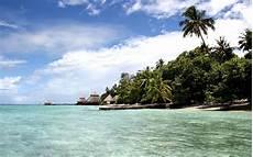 tropical island wallpaper wallpapersafari