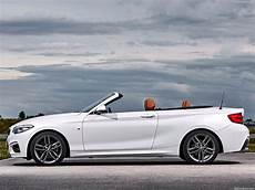 Bmw 2 Series Convertible 2018 Picture 29 Of 108