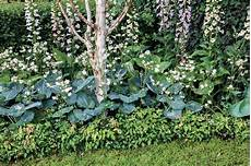 Les Couvre Sol Pous Un Jardin Sans Entretien D 233 Tente Jardin