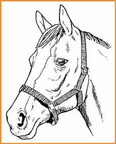 Malvorlagen Pferdekopf Kostenlos Malvorlage Pferdekopf Gratis Zum Ausdrucken Kostenlos