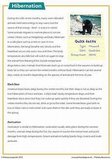 comprehension worksheets for year 6 students reading comprehension hibernation primaryleap co uk