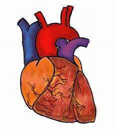 Gambar Jantung Kartun Hitam Putih