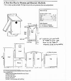 mountain bluebird house plans where to place your bluebird house birds beasleys