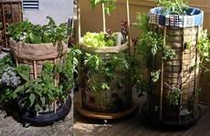 Konsep Cara Membuat Vertical Garden Dari Paralon Taman
