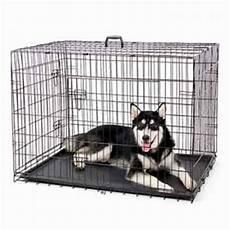 gabbia per cani gabbia per cani trasportino per cani