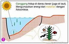 Teori Dan Proses Lengkap Pembentukan Minyak Bumi