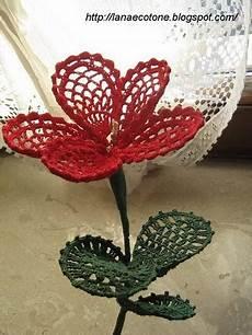 fiore con s questo fiore e davvero bellissimo